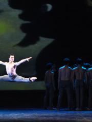 BALLETTO DEL SUD: SERATA STRAVINSKY – 14 Dicembre 2014