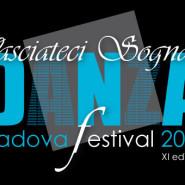 Festival2014_500X350