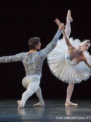 CONFERENZA: IL BALLETTO ROMANTICO 25 Novembre 2014
