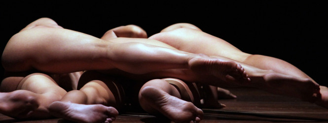ARAGOSTA – ASMED BALLETTO DI SARDEGNA