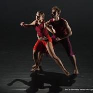 """BallettoTeatroDiTorino """"KissMeHard"""""""