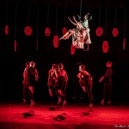 CompagniaArtemisDanza_Butterfly