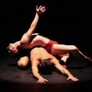 Vetrina di Danza Contemporanea_Balletto di Siena CompagniaStabileResidente al Comune di Siena