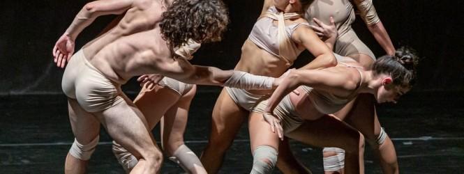 A proposito di…WOE FROM WIT_C.P.P. #padovadanza2019 20.10.2019 Teatro ai Colli